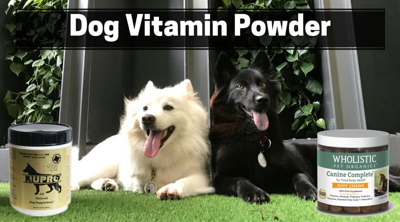 Dog Vitamin Powder