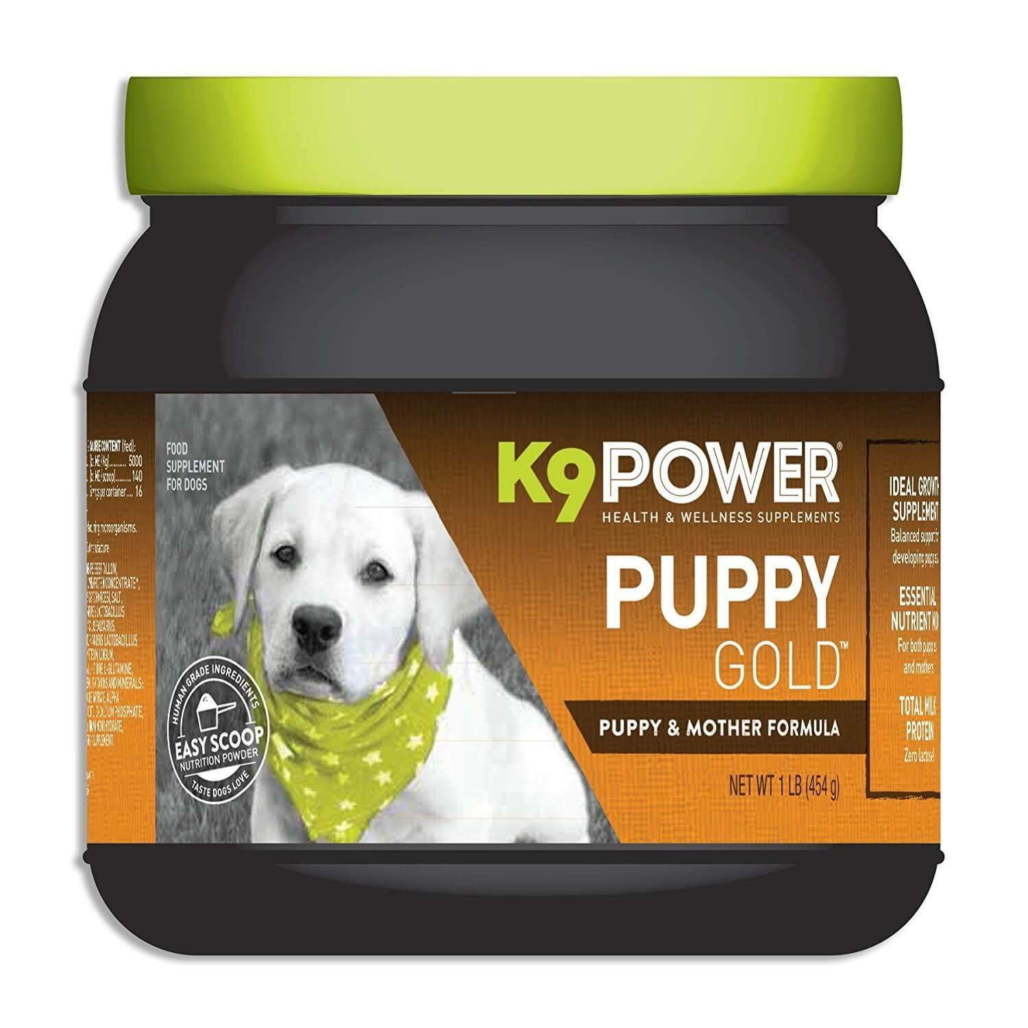 K9-Power Puppy Gold