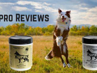 Nupro Reviews