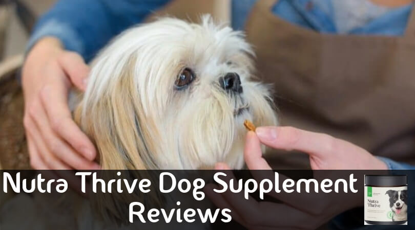 Nutra Thrive Dog Supplement Reviews