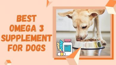 Best Omega 3 Supplement For Dogs
