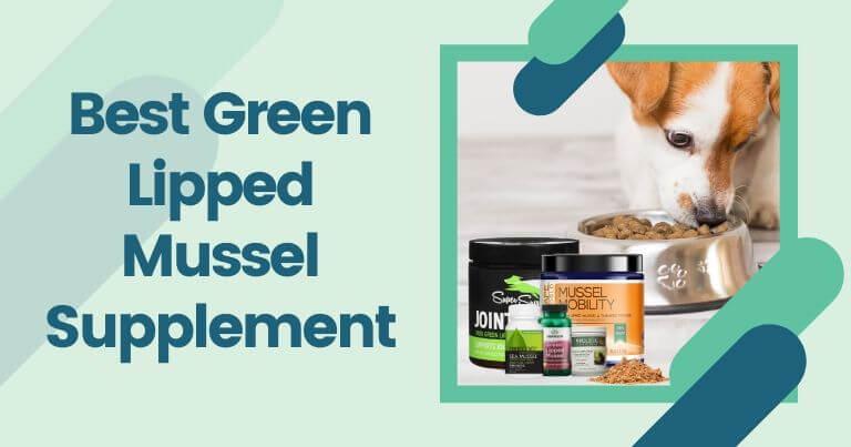 Best Green Lipped Mussel Supplement
