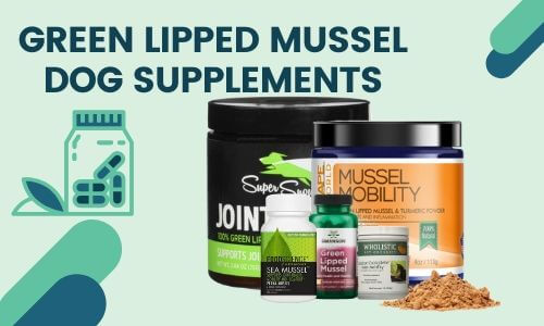 Green Lipped Mussel Dog Supplements