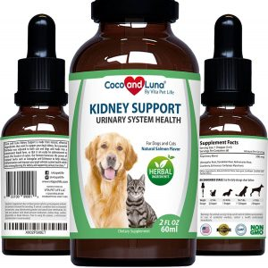 Kidney Support for Dogs and Cats