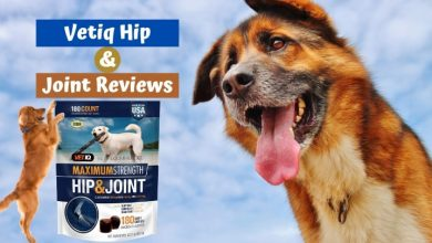 Vetiq Hip and Joint Reviews